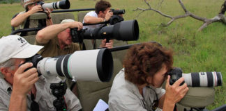 Kenya Photographic Safaris